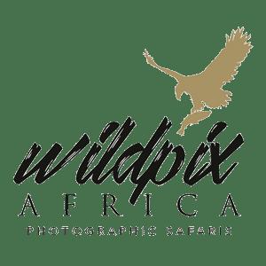 Wildpix Africa photography Safaris